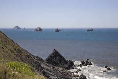 oregon-coast.jpg