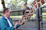 giraffe checking out Tom